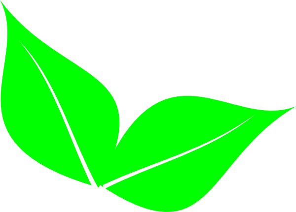 One vector leaf. Two clipart clipartix