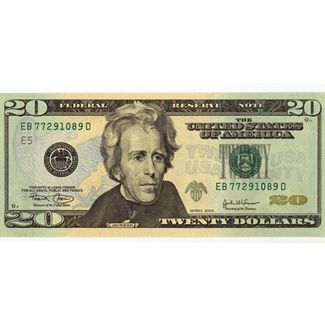 20 dollar bill png. Should the country put