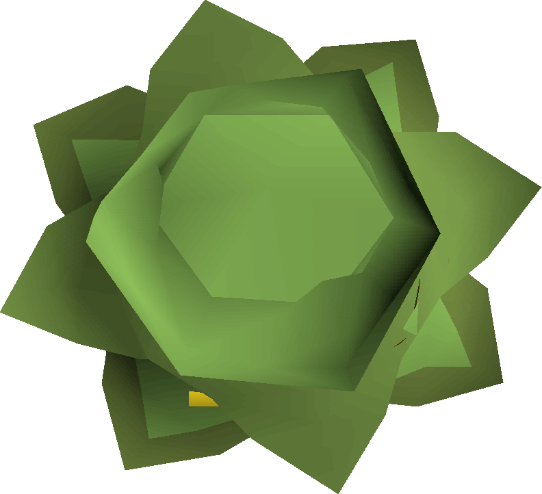 2007scape cabbage png