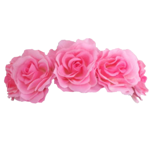 2ds transparent flower crown. Png images free icons