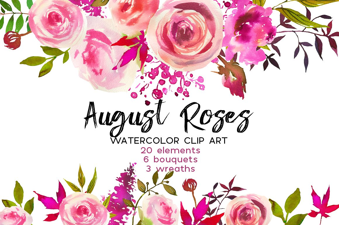 3 clipart rose. August roses watercolor clip