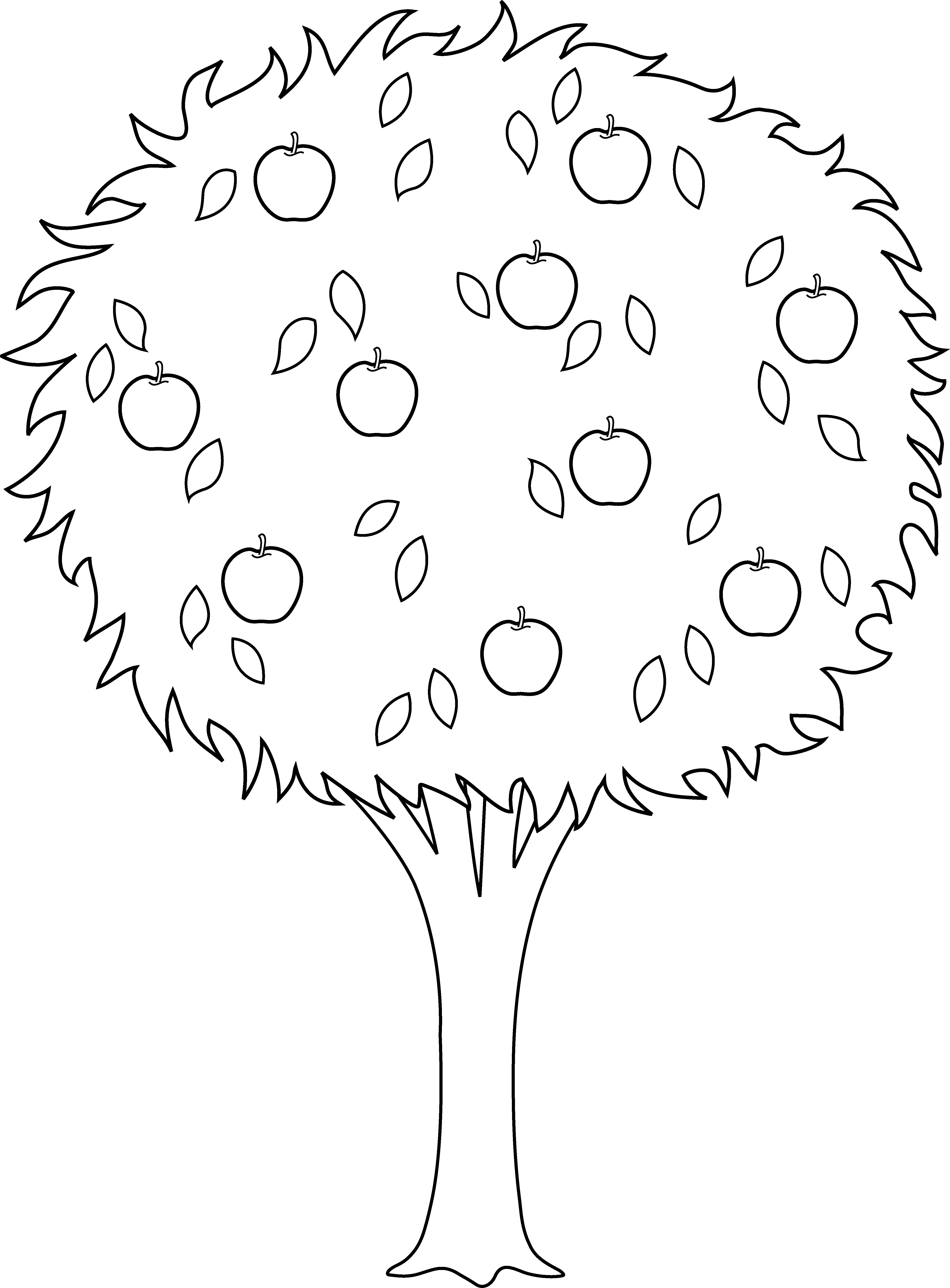 Bud drawing black and white. Apple tree line at