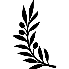 3 vector nature tree. Silhouettes page olive branch