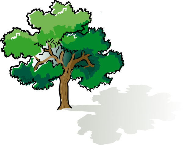 3 vector oak tree. Clip art at clker