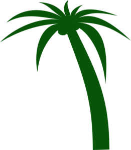 3 vector tree. Coconut clip art at