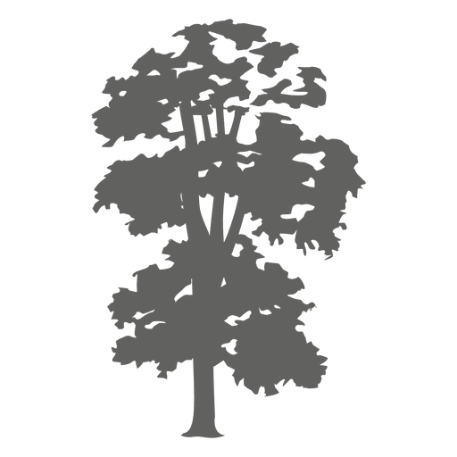Swamp vector svg. Tree silhouette transparent png