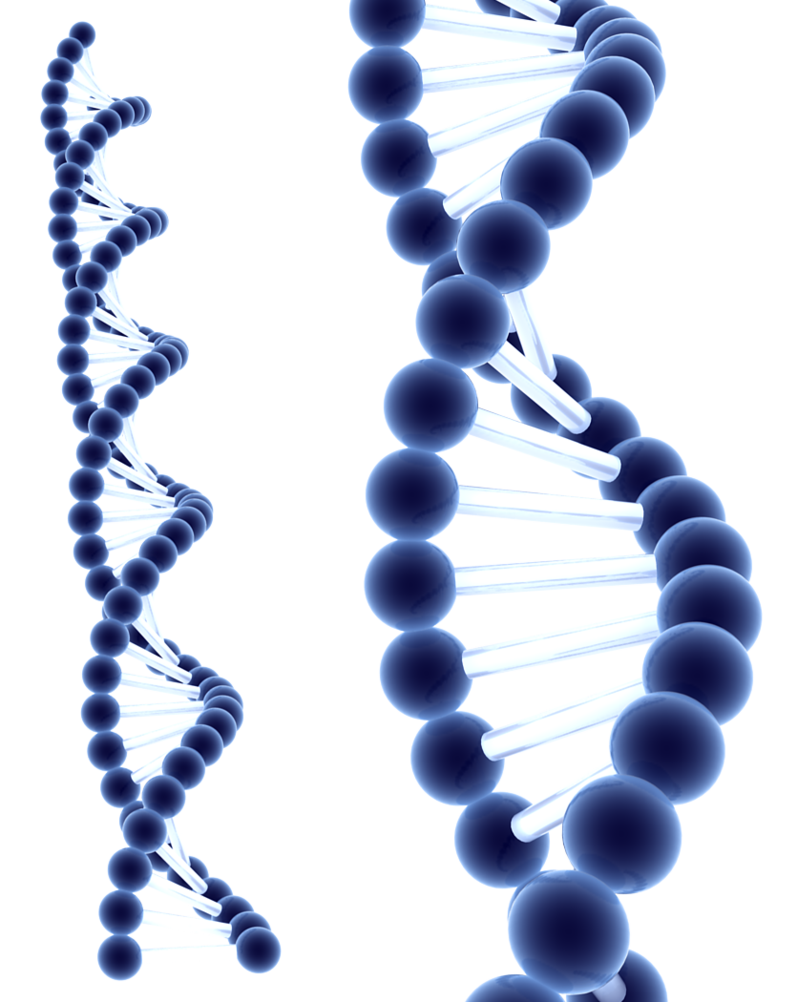 Blue by milan r. 3d dna png picture freeuse