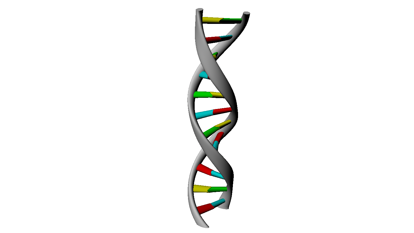 d strand rendering. 3d dna png png black and white