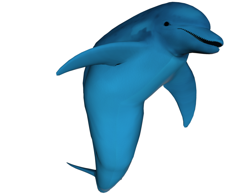 3d dolphin png. By equi vampire stock