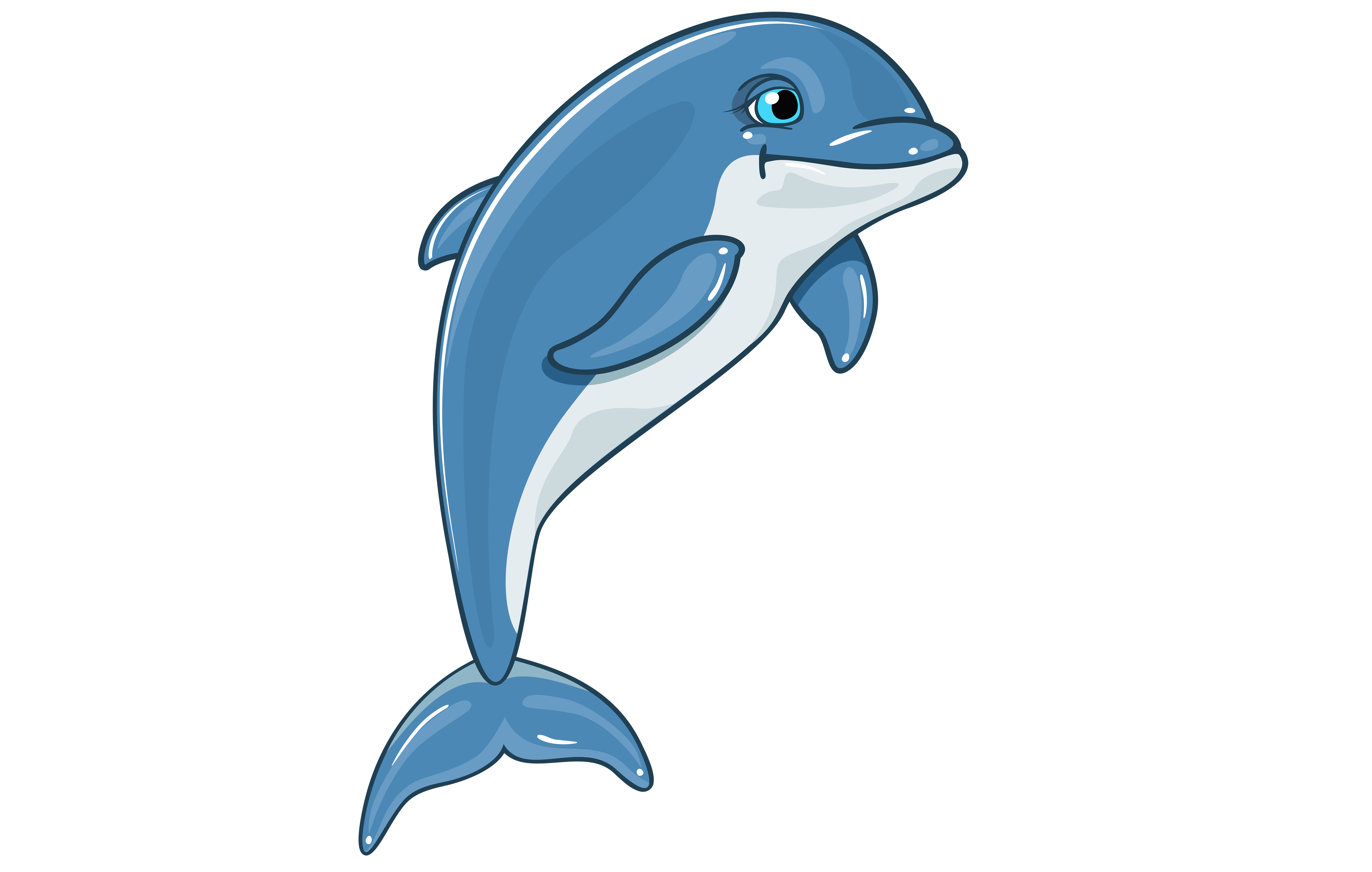 3d dolphin png. Clip art d dolphins