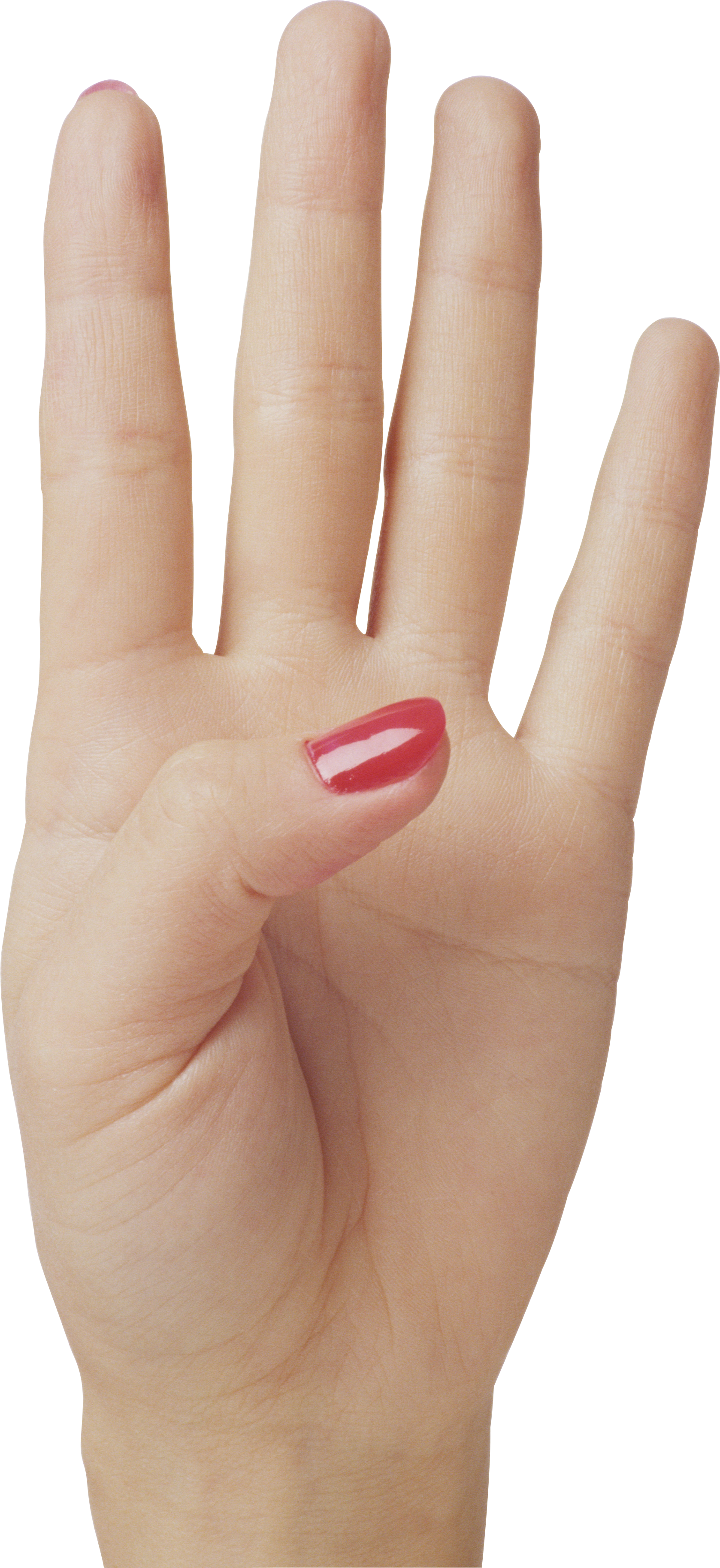 4 finger png. Four hand image purepng