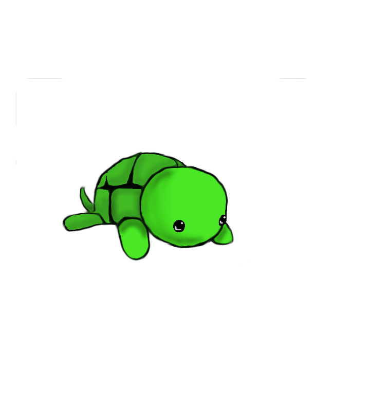 4d drawing cute. Drawings of turtles google