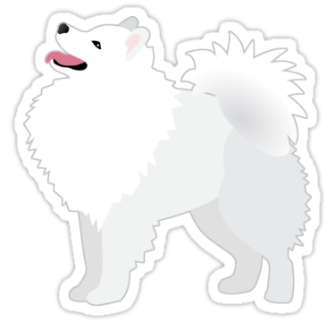 American eskimo breed illustration. 4d drawing dog royalty free download