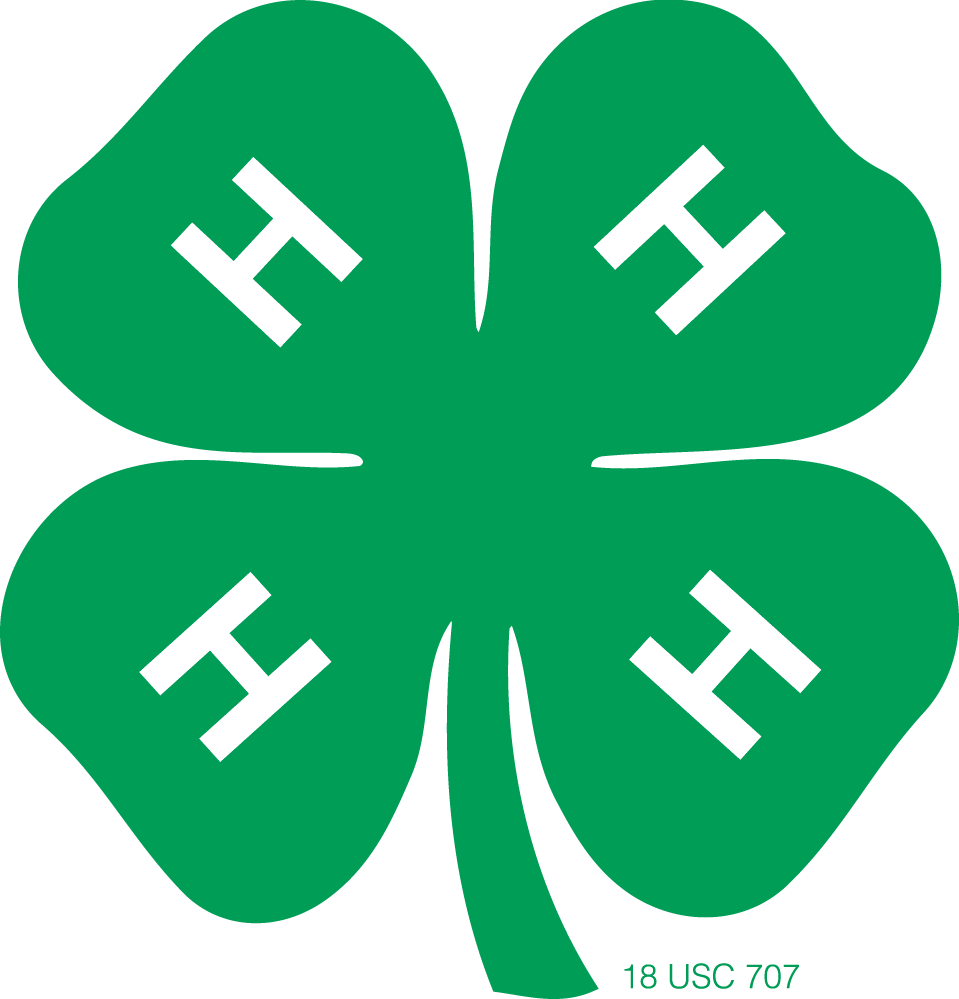 H vector stylized. Tangi clovers clover