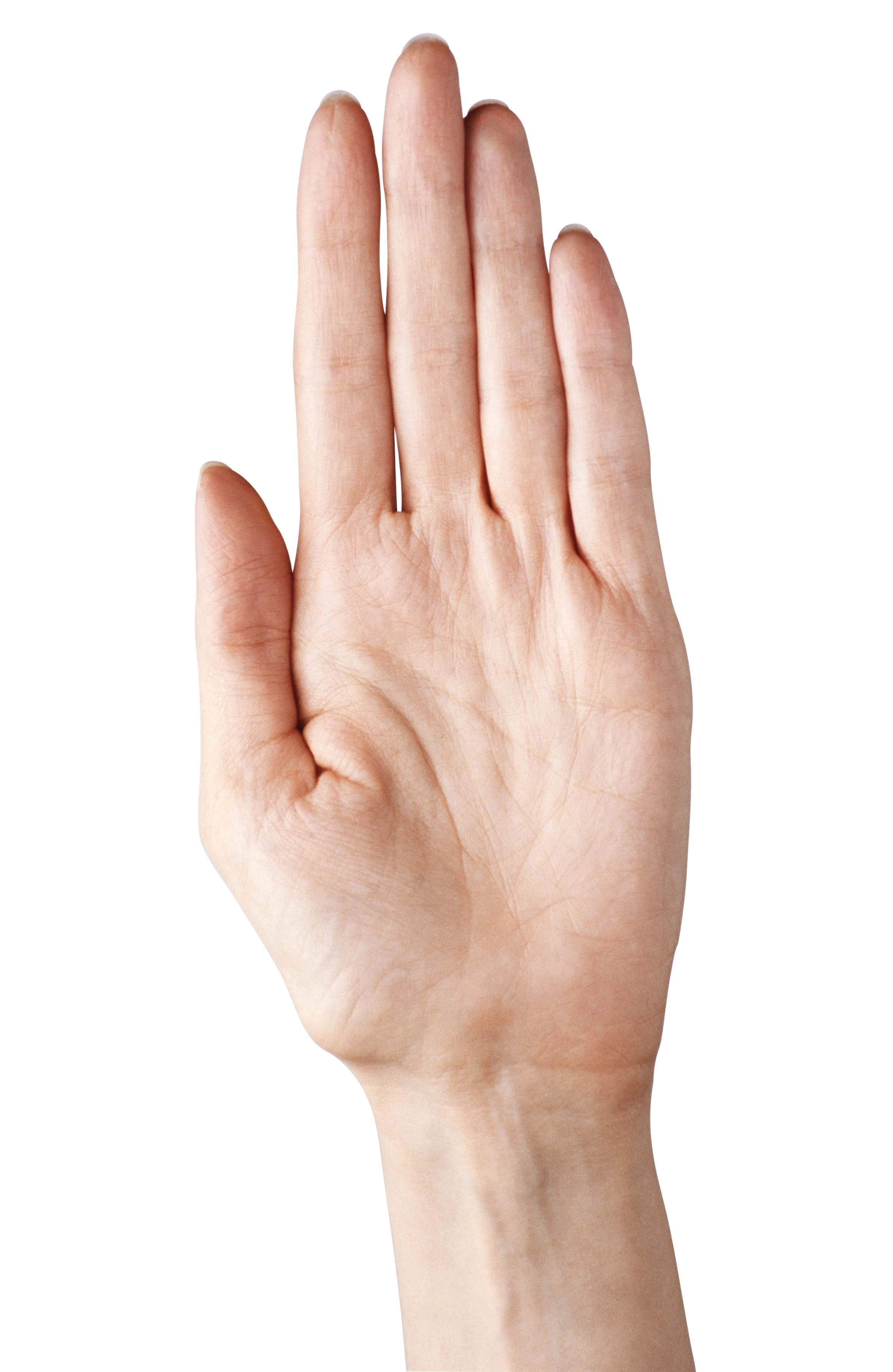 Showing five fingers clipart. Hand finger png image library stock