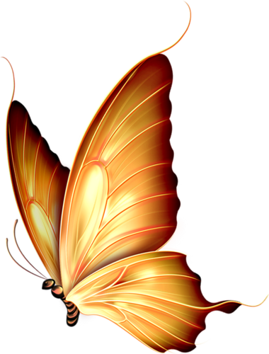 gold butterflies png