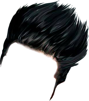 Png hair. Hairstyle transparent images pluspng