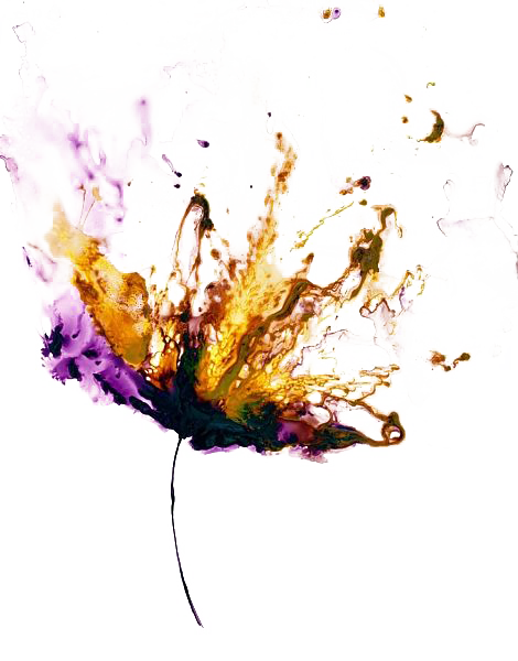 Abstract flower png. Photo arts