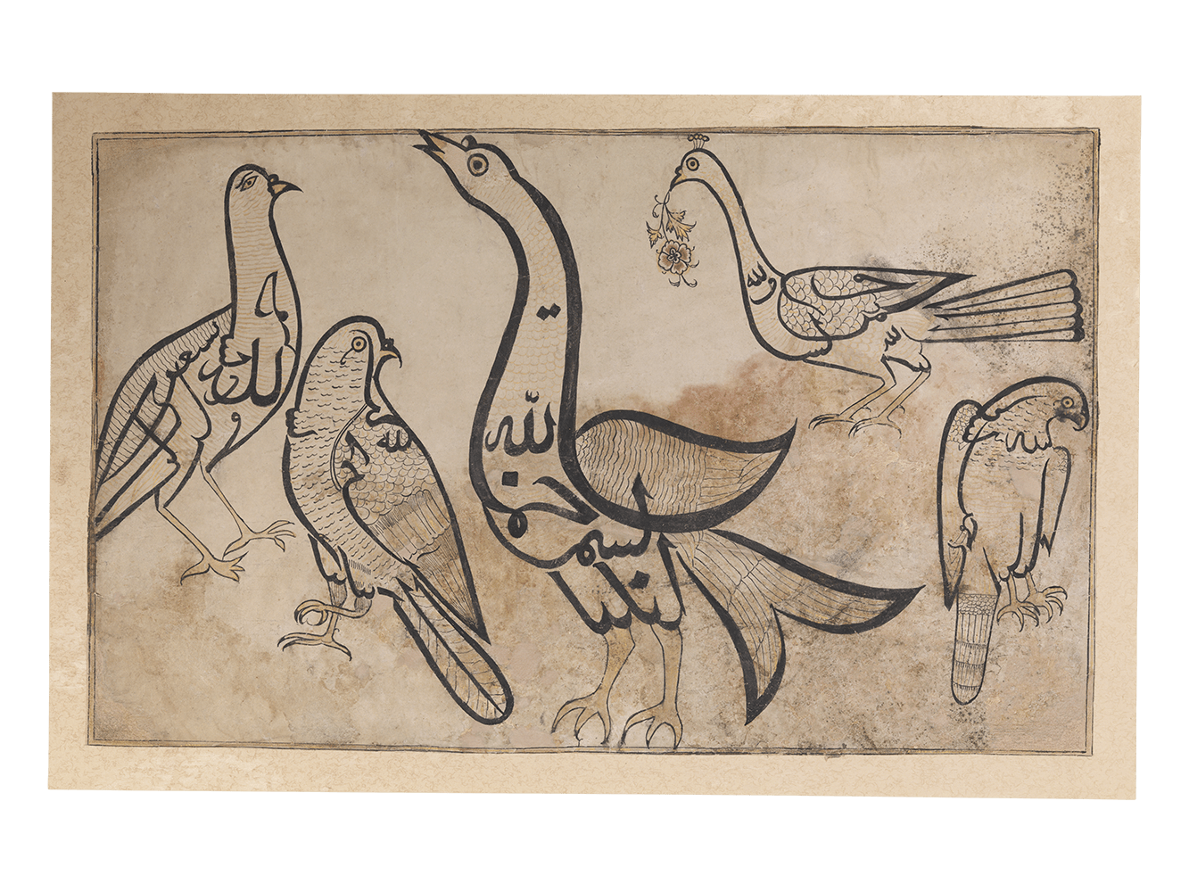 Academic drawing 19th century. Birds in the form
