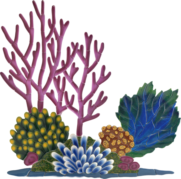 Seaweed clipart coral reef. Little tile inc online