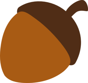 acorn transparent vector