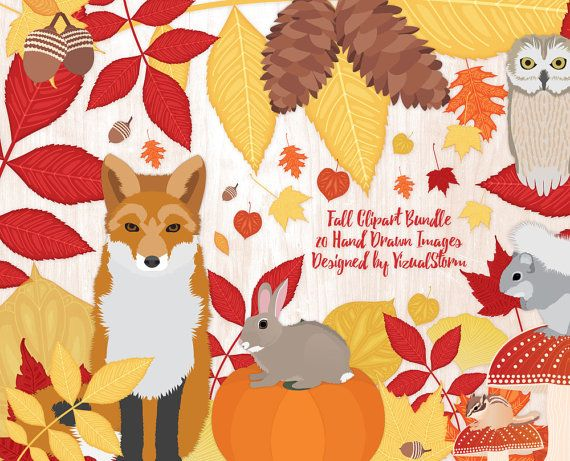 Acorn clipart fox squirrel. Autumn animal fall harvest