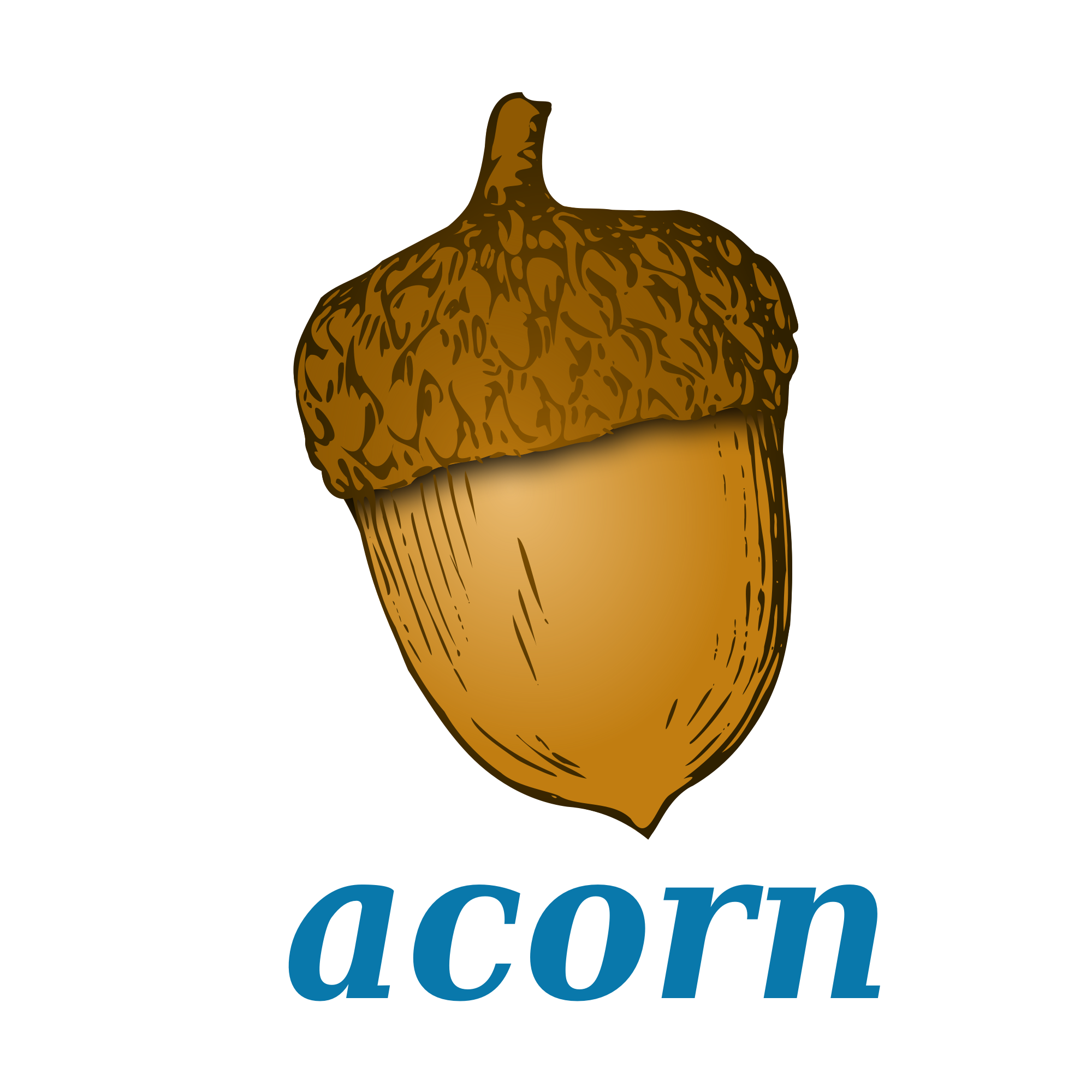 Acorn svg animated
