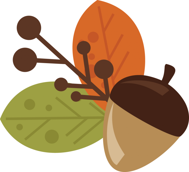Acorn svg cute cartoon. And leaves free files