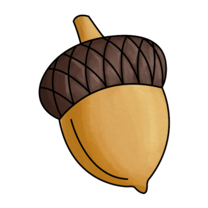 acorn transparent kawaii