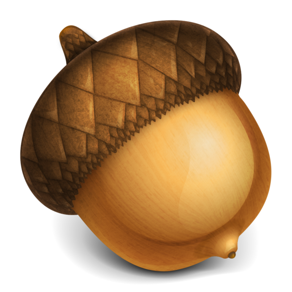 Acorn transparent color. Image editor on the