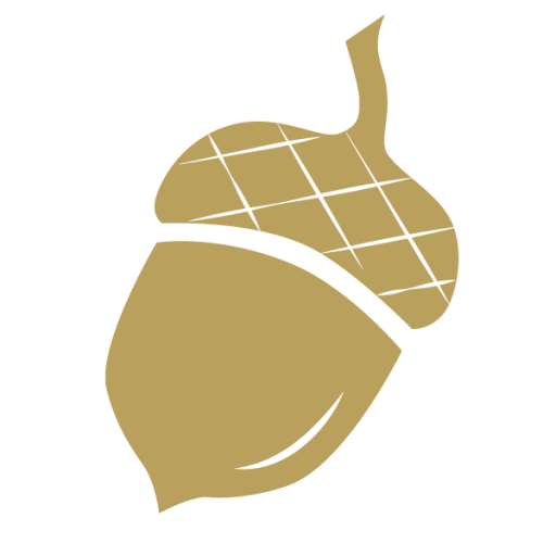 Acorn transparent gold. Cropped icon png studio