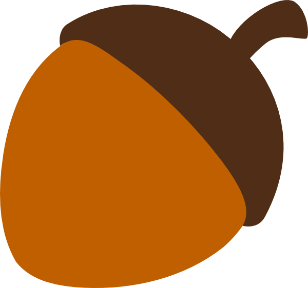 Acorn transparent line art. Collection of clipart
