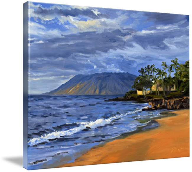 Natural drawing beach. Hawaii sunset painting with