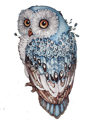 Celestial drawing owl. Hibou clip art work