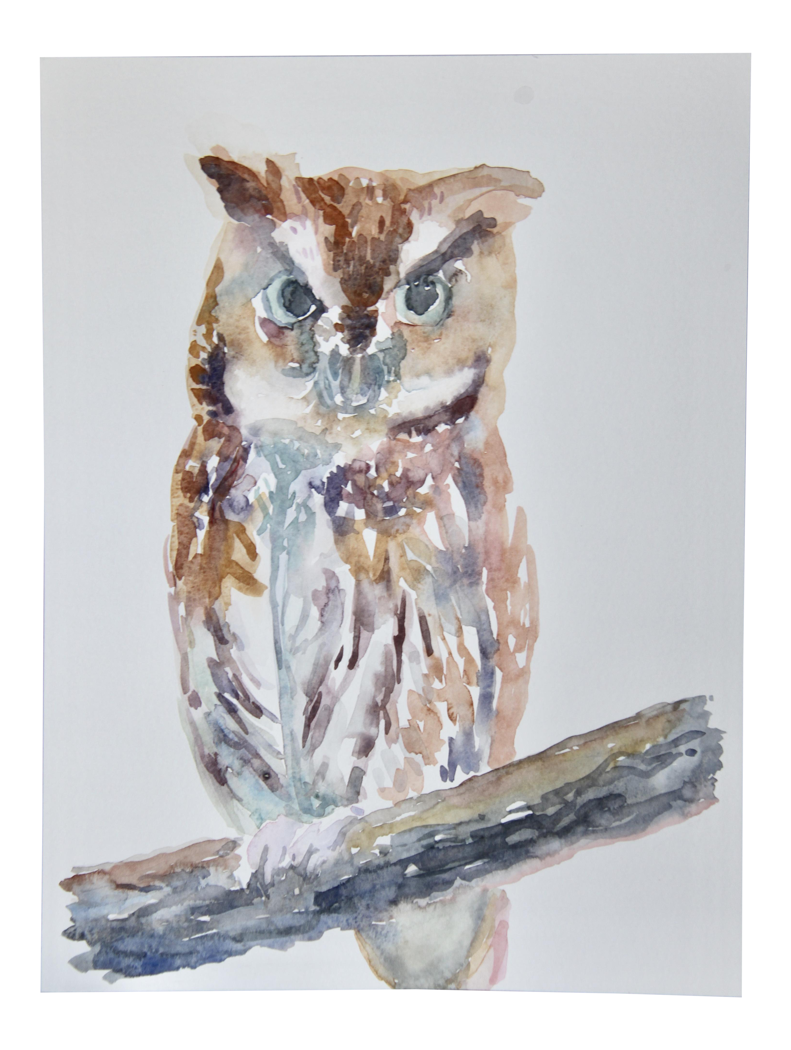 Acrylic drawing owl. Original watercolor painting of