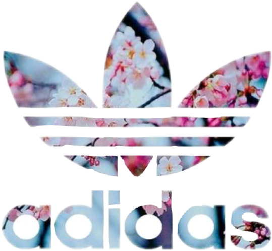 Adidas png tumblr. Sticker by strana