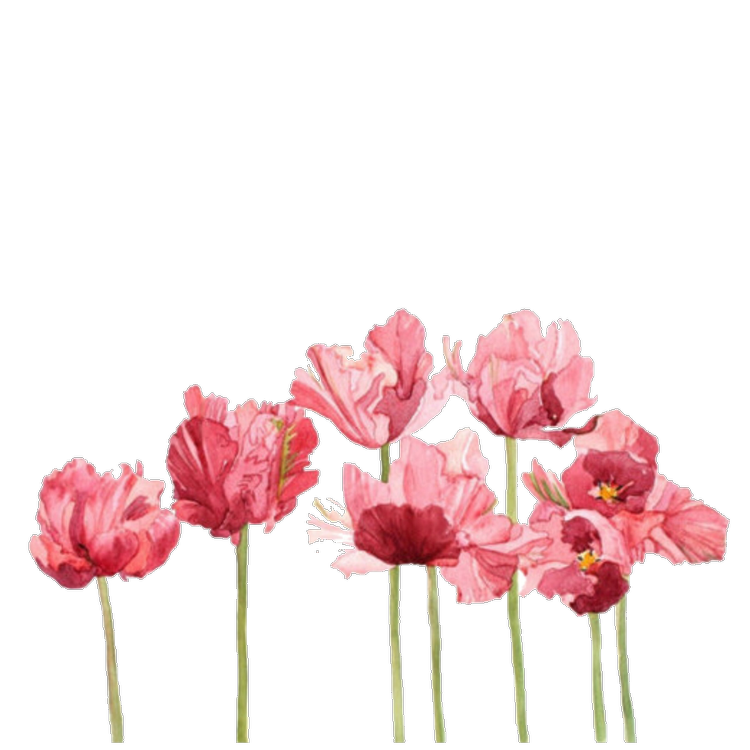 Aesthetic flowers png. Shared by hi welcome