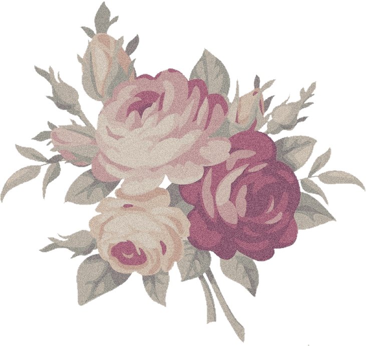Aesthetic flower png. Download rose image with