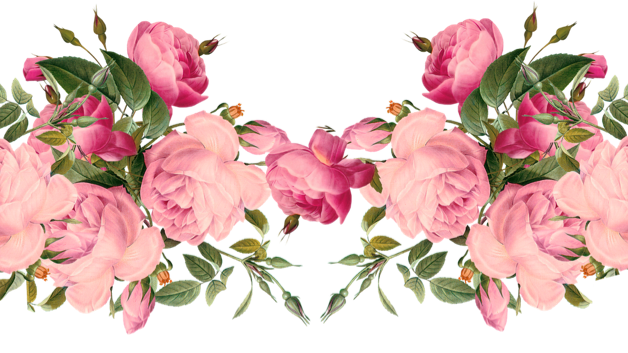 Aesthetic flowers png. Msparp boards revive oc