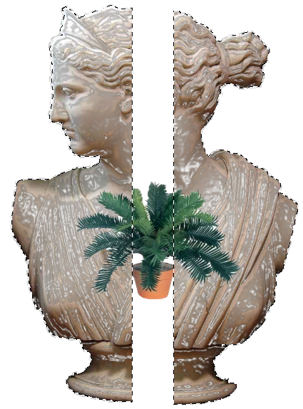 Aesthetic plant png. Pin by tumblr