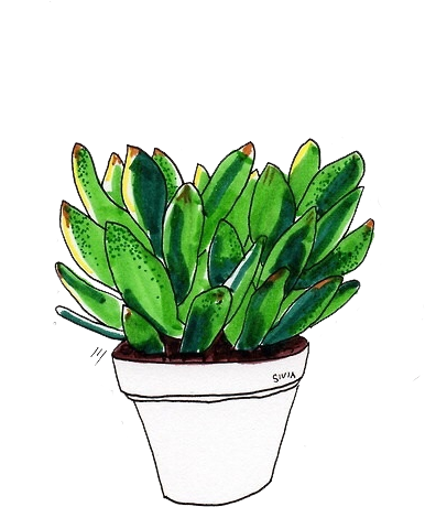 Aesthetic plant png. Download transparents tumblr drawing