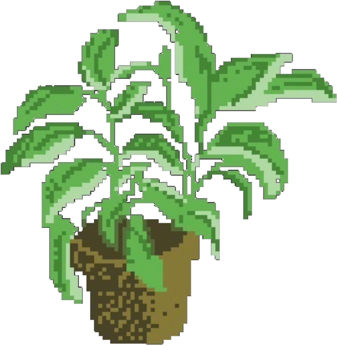 Aesthetic plant png. Download hd transparent plants