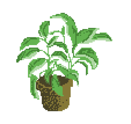 Aesthetic plant png. Transparents uploaded by