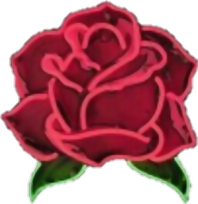 Aesthetic Rose Transparent Png Clipart Free Download Ya Webdesign