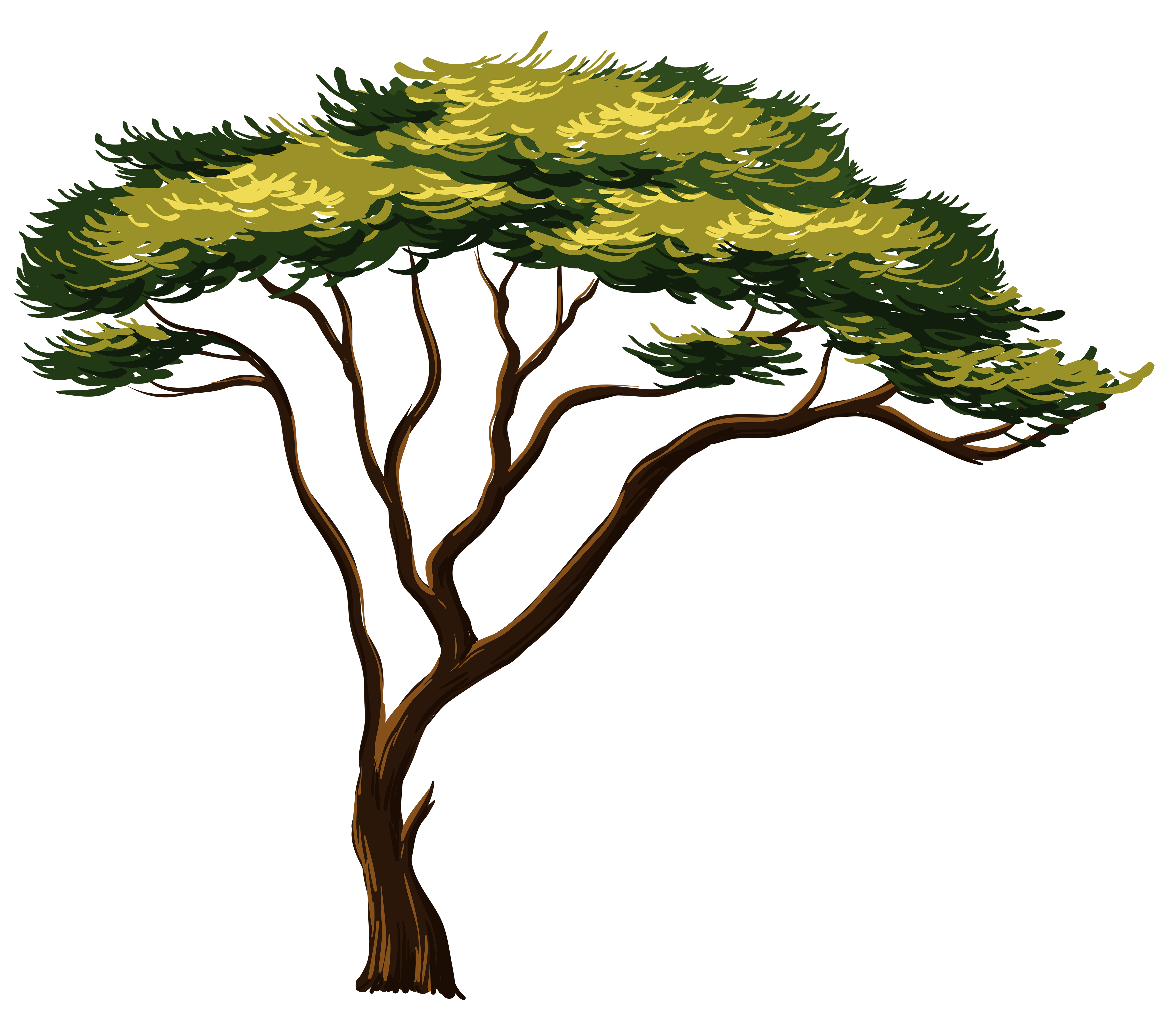 Africa clipart transparent. Painted african tree png
