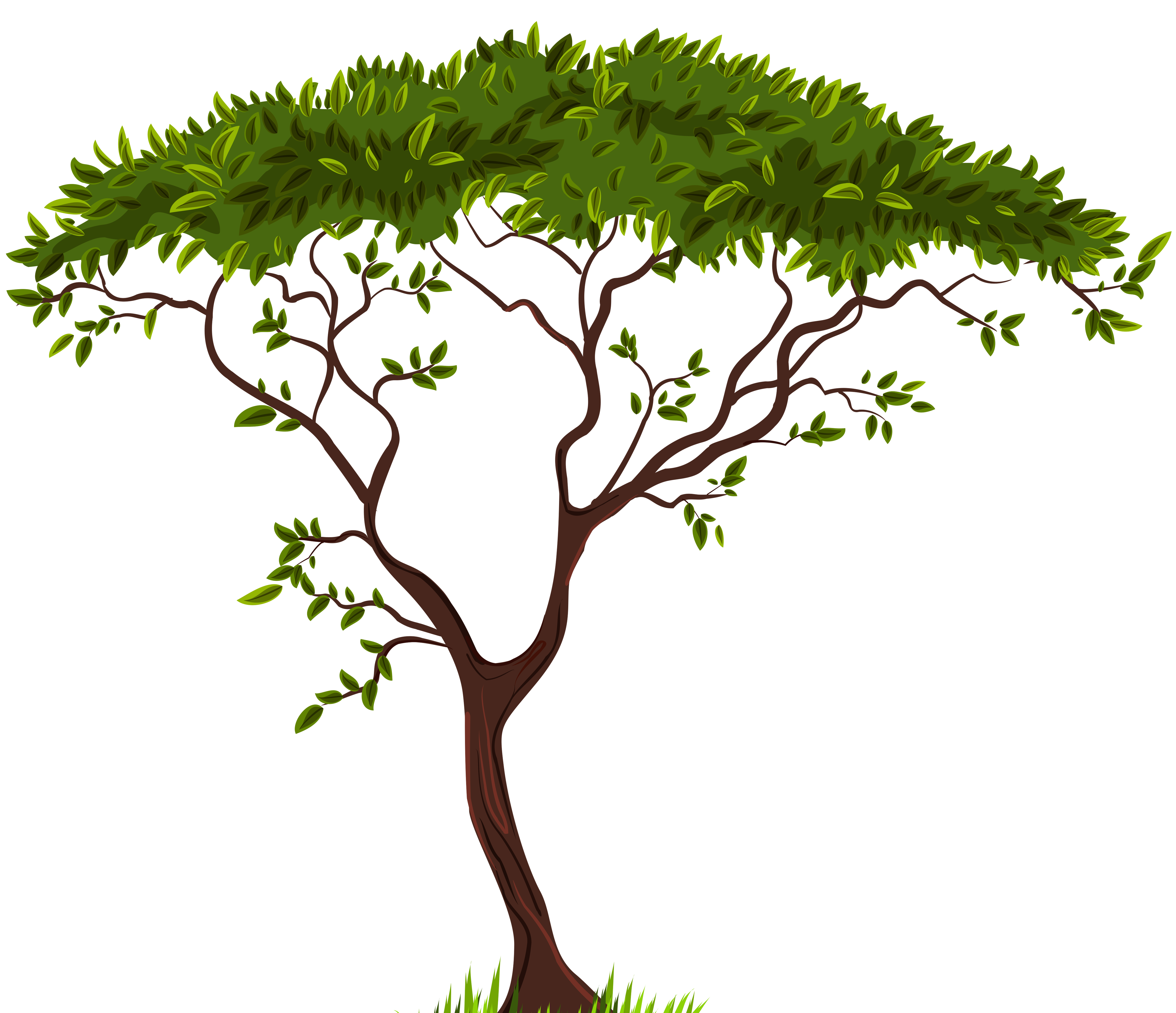 Africa tree png. Exotic clip art best
