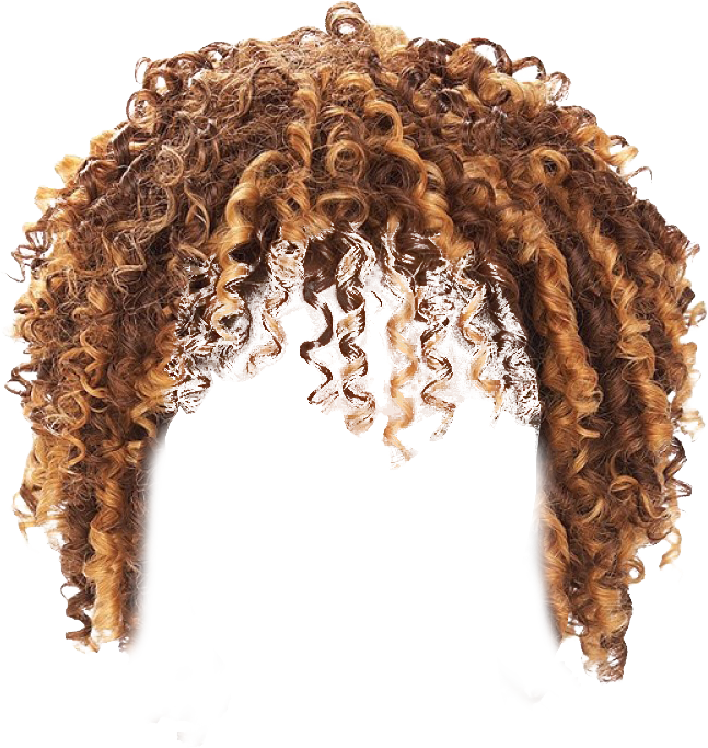 Afro wig png. Twist hair transparent background