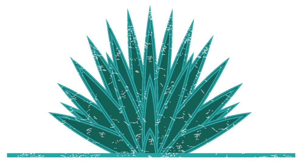 Agave plant png. About heritage festival mock