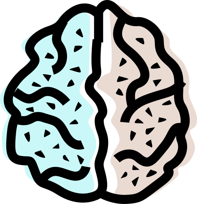 Ai vector brain. Left and right hemisphere