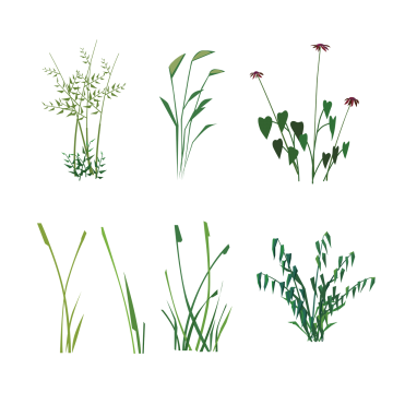 Ai vector grass. Eco green png vectors